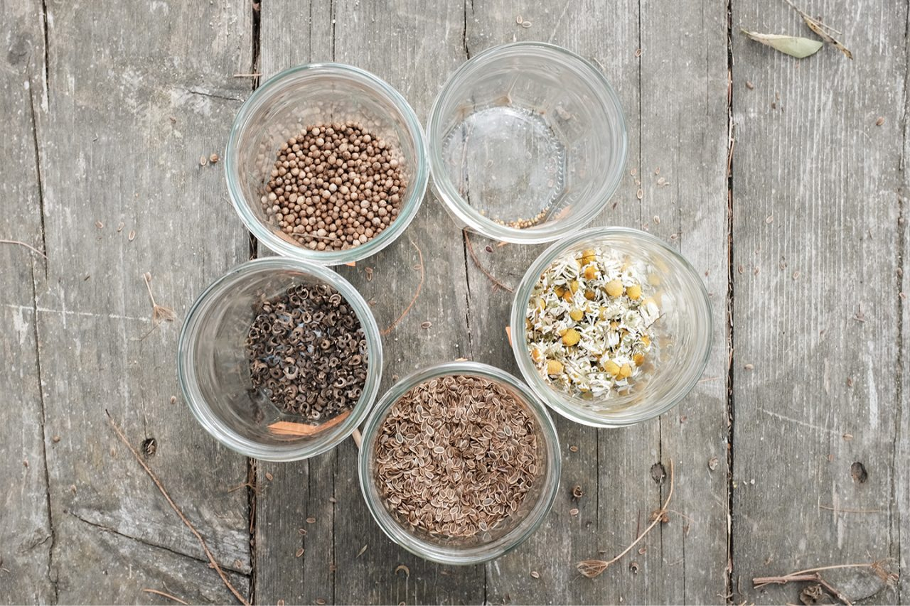 seeds in glass jars