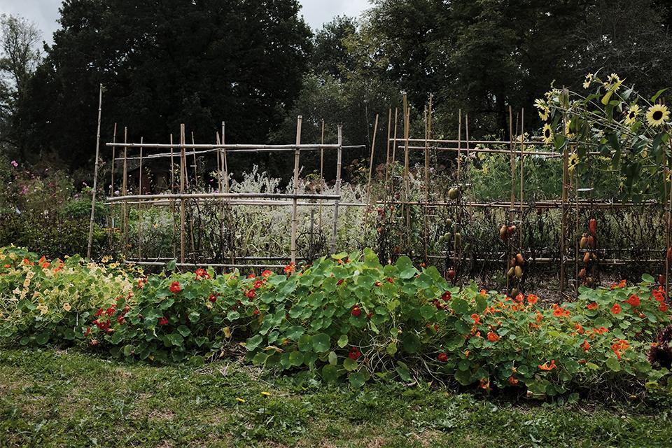 garden boisbuchet