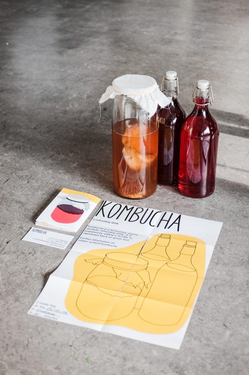 kombucha starter and drink